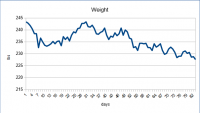 12 week weight loss report
