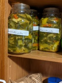 small batch bread and butter pickles